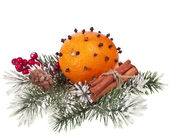 Orange - clove with fir twig isolated on a white background — Zdjęcie stockowe
