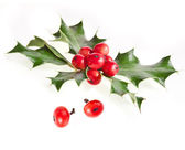 Christmas ilex holly with red berries decoration isolated on white — Stock Photo
