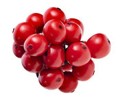 Fresh red berries holly isolated on white — Stock Photo
