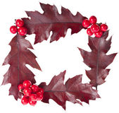 Christmas decoration frame of red berries holly with oak leaves isolated on white — Stock Photo