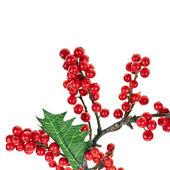 weihnachts girlande der europ ischen stechpalme ilex stockfoto madllen 34310757. Black Bedroom Furniture Sets. Home Design Ideas