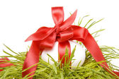 Easter egg in fresh spring grass — Stock Photo