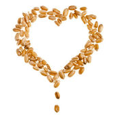 Wheat sprout in shape heart Isolated on white background — Stock Photo