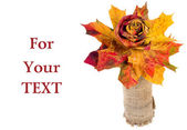 Bouquet of colorful autumn leaves isolated with copy space for your text — Stock Photo