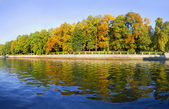 Beautiful autumn park at sunny weather — Stock Photo