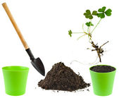 Gardening tools with soil and flower pot isolated on white background — Foto Stock
