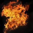 Fire on a black background — Stock Photo #13991412