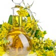 Постер, плакат: Bottle Decanter oil with Flower Rape Mustard isolated on white background
