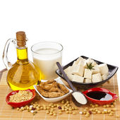 Soybean and Soy products isolated on white — Stock Photo