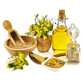 Mustard oil jar and powder, seeds, spoon and mustard flower blossom on white — Stock Photo