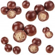 Chocolate candy balls with crisp filling isolated on white background — Stock Photo