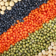 Royalty-Free Stock Photo: Colorful striped rows of lentils, beans, peas, soybeans, legumes, seed, backdrop
