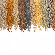 Cereal Grains and Seeds — Foto de Stock