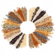 Round of Cereal Grains, Seeds, Rye, Wheat, Barley, Oat, Sunflower, Corn, Flax, Poppy, on white background - Lizenzfreies Foto