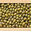 Green mung beans in wooden frame box — Stock Photo