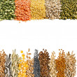 Cereal Grains, Seeds, Beans, border on white background — Stock Photo #14091752