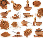 Collection of cocoa powder isolated on white background — Stock Photo