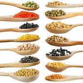 Raccolta di legumi, fagioli, piselli, lenticchie su cucchiai di legno isolati su bianco — Foto Stock