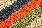 Colorful striped rows of lentils, beans, peas, soybeans, legumes, seed, backdrop — Stock Photo