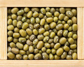 Green mung beans in wooden frame box — Stok fotoğraf