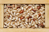 Brown rice grain in wooden frame box — Stock Photo