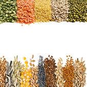 Grãos de cereais, sementes, feijões, fronteira no fundo branco — Foto Stock
