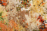 Mixture of lentils, beans, peas, soybeans, legumes, backdrop — Stock Photo
