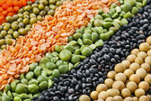Colorful striped rows of dry lentils, soya beans, groats,peas, grain, buckwheat, soybeans, legumes, rice, backdrop — Stock Photo