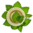 Herbal nettle tea on white background - Stock Photo