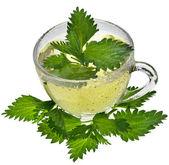 Herbal nettle tea on white background — Stock Photo