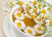 Herbal chamomile tea isolated on white background — Stock Photo