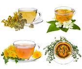 Tazza di tè alle erbe e fresca erba isolati su sfondo bianco — Foto Stock
