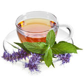 Glass Cup Tea with Mint Leaf and herb flower, Isolated on White Background — Stock Photo