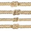 Hemp ropes with knot isolated on white background — Stock Photo #14161749