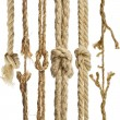 Hemp ropes with knot isolated on white background - Stock Photo