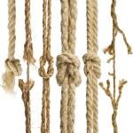 cuerdas de cáñamo con nudo aislado sobre fondo blanco — Foto de Stock