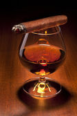 Cognac and Cigar on black background — Stock Photo