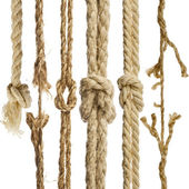 Hemp ropes with knot isolated on white background — Zdjęcie stockowe