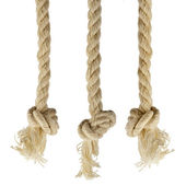 Ropes with knot isolated on white background — Stok fotoğraf