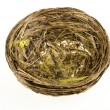Nest on a white background - Stock Photo