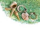 Sale di mare e conchiglie isolati — Foto Stock