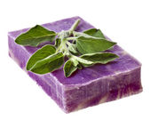 Herbal soap with oregano thyme isolated on white — Stock Photo