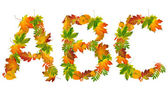 Letter ABC made of autumn leaves — Stock Photo