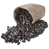 Semi di girasole in un sacchetto di tela da imballaggio — Foto Stock