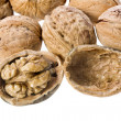 Walnut isolated on white background — Stock Photo #14380505