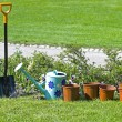 Gardening, garden tools - Stock Photo
