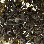 Dried seaweed kelp background — Stock Photo