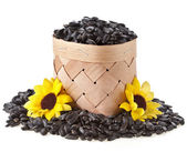 Sunflower seeds on white background — Stock Photo
