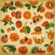 Orange fruit and berries on old paper background — Stock Photo