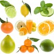 Royalty-Free Stock Photo: Collection fresh citrus isolated on the white background